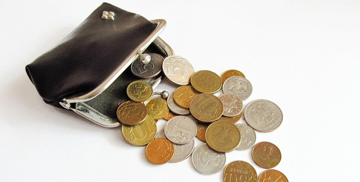 Власти Таганрога объяснили выплату многодетной матери 47,5 рублей