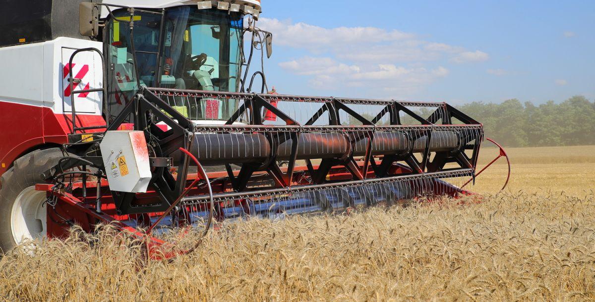 Ростовская область побила рекорд поуборке зерна