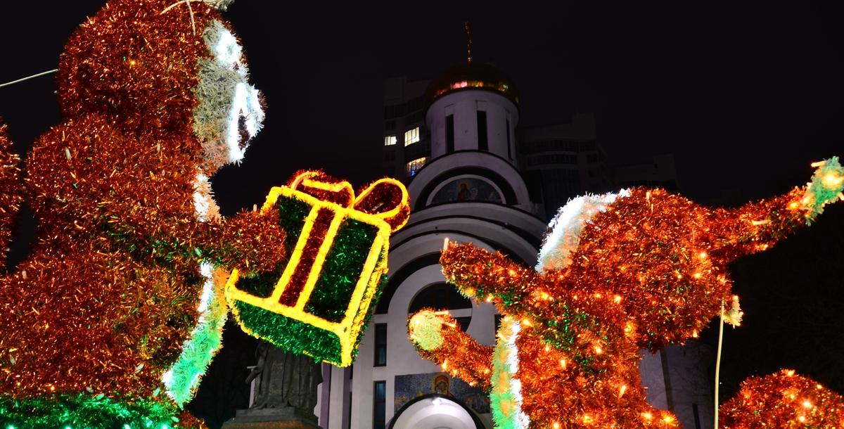 В Новый год даже белочки поздравляют друг друга и дарят друг другу подарки.