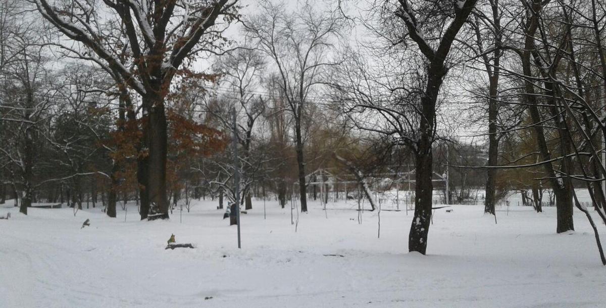 На территории нынешней Поляны сказок располагался немецкий палаточный лагерь.