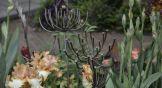 Среди настоящих цветов – растения из металла.