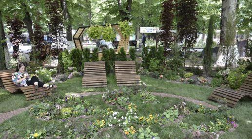 В фестивале принимают участие девять садов, обустроенных профессиональными ландшафтными дизайнерами, две студенческих композиции и 20 мини-клумб, которые сделали ростовские школьники, а также еще несколько арт-объектов. Конечно, основу выставки в парке составляют работы профессиональных мастеров. Например, этот сад, который называется «Мастер и маргаритки».