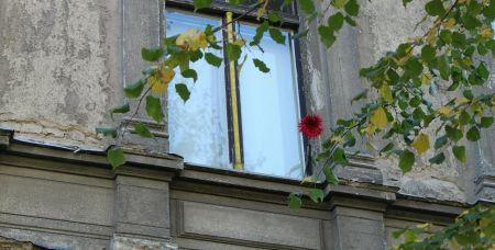 На фото - не тот самый дом в переулке Итальянском, который признали аварийным, а другой.
